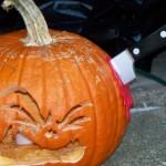 Poor pumpkin... that has to hurt.