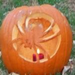 Spidery pumpkin