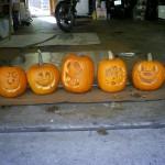 All my cute little pumpkins in a row