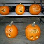 This year's pumpkins