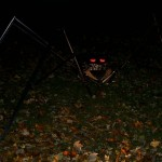 The spider in the graveyard, by night